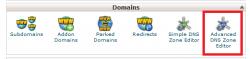 فعال کردن Advanced DNS Zone Editor در سی پنل