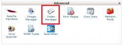 Index manager در سی پنل