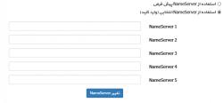 تنظیم DNS دامنه های ملی